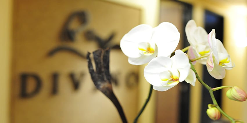 2-ORCHID-LOGOWALL